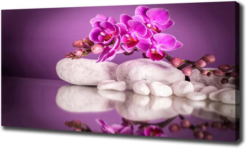 Tablou pe pânză canvas Orhidee roz