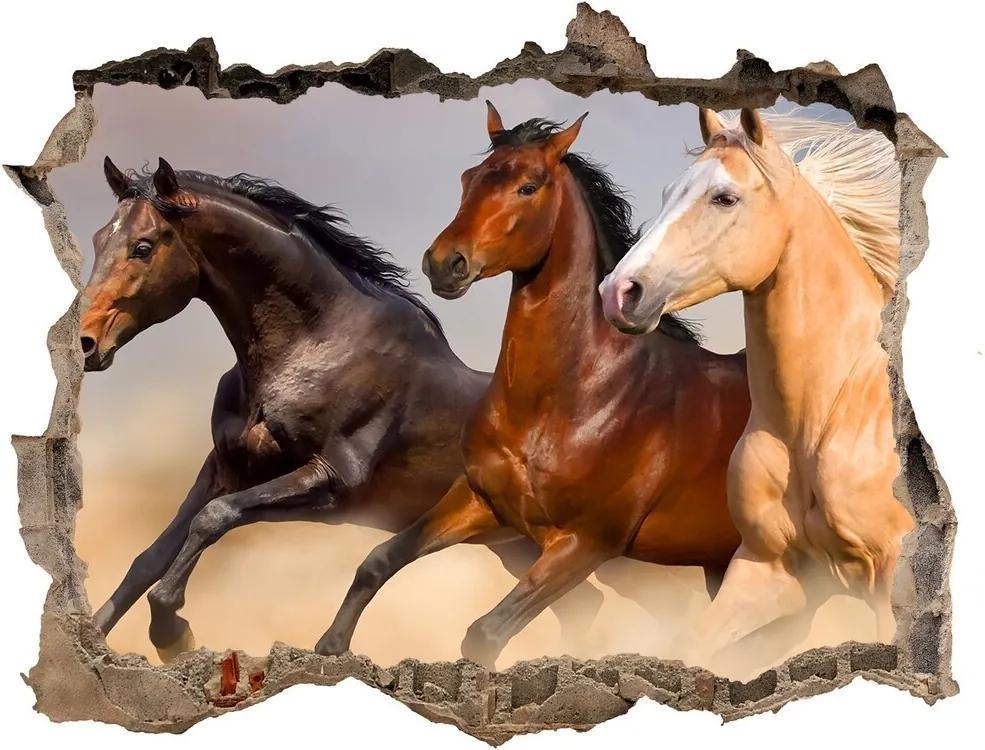 Autocolant gaură 3D Galopantă cai