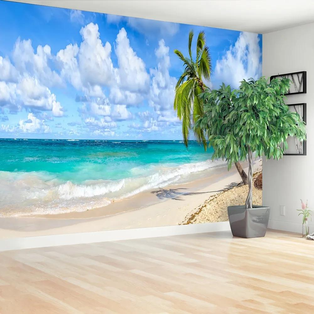Fototapet Palmier de nuca de cocos