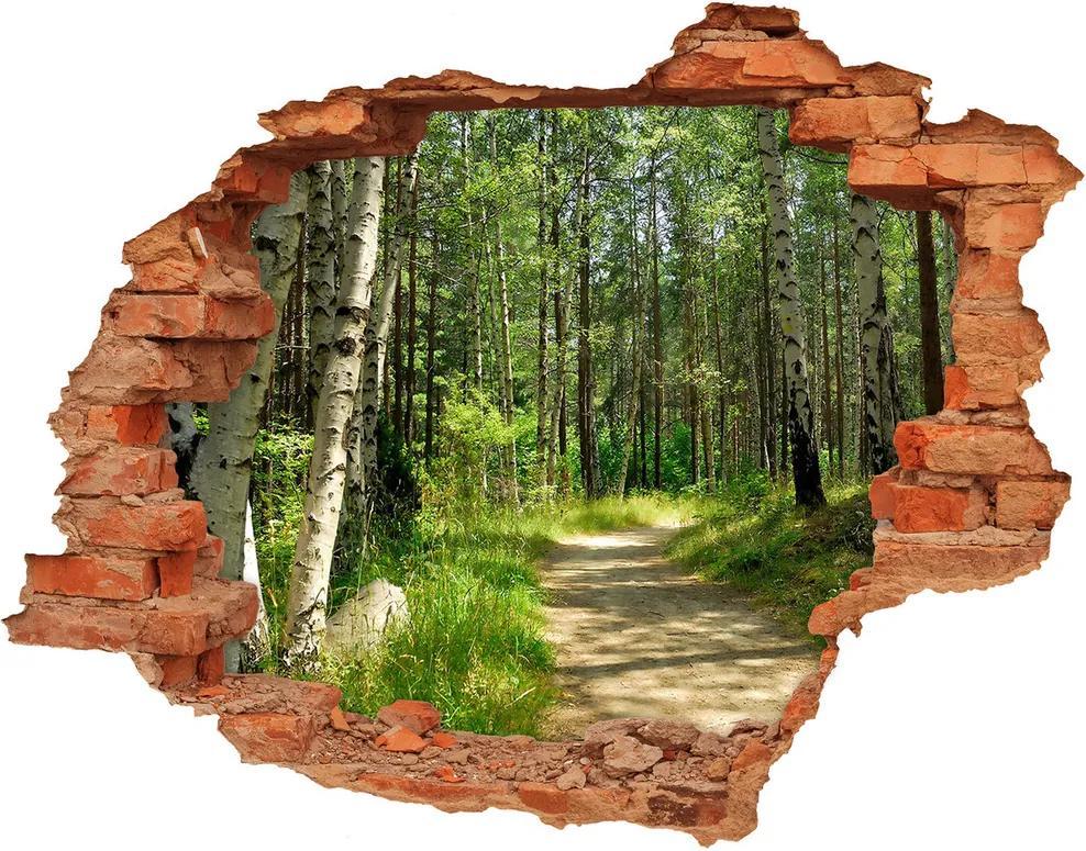 Autocolant gaură 3D Calea în pădure