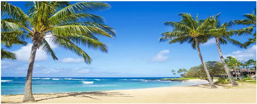 Tablou pe sticlă acrilică Plaja tropicala
