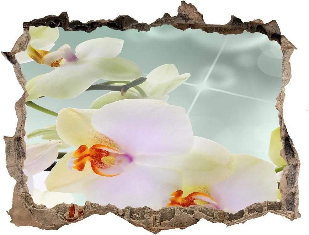 Autocolant un zid spart cu priveliște Alb orhidee