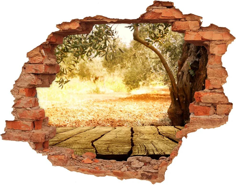 Fototapet un zid spart cu priveliște Oliv