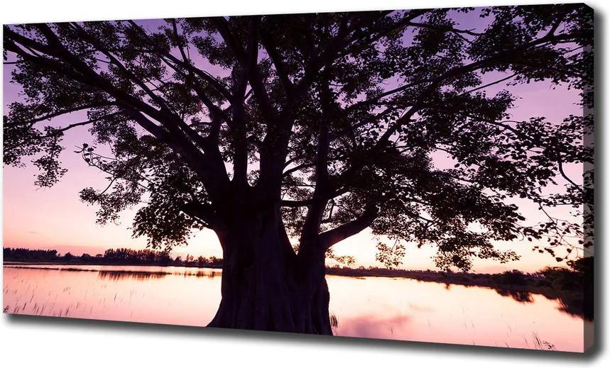 Tablou pe pânză Copac și lacul