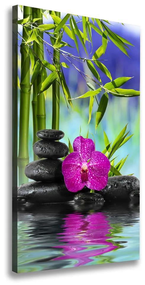 Print pe pânză Orhidee și bambus