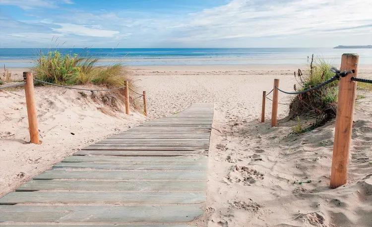 Path Beach Sand Nature Fototapet, (416 x 254 cm)