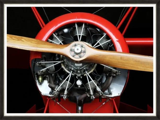 Tablou Framed Art Wood Propeller