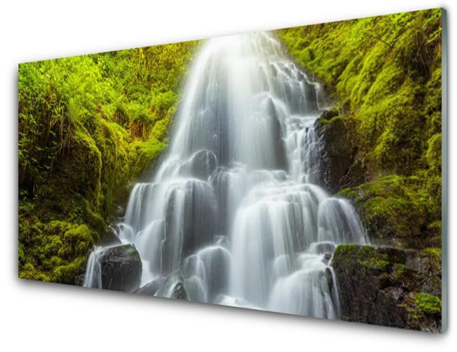 Tablou pe sticla acrilica Cascada Natura Alb Gri Verde