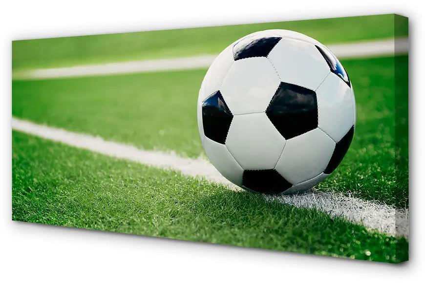 Tablouri canvas Tablouri canvas peluză de fotbal