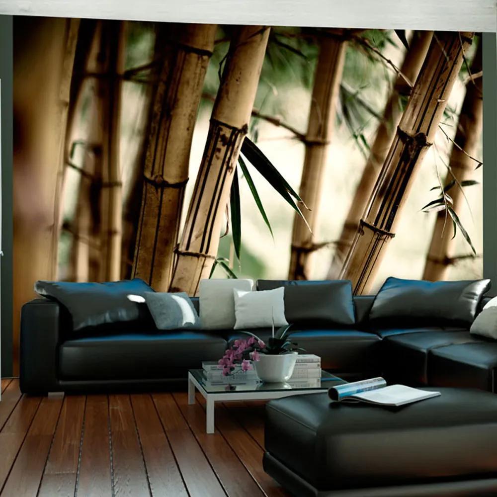 Fototapet Bimago - Fog and bamboo forest + Adeziv gratuit 200x154 cm