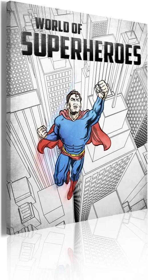 Tablou Bimago - World of superheroes 50x70