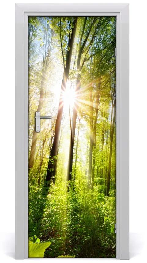 Autocolante pentru usi Soare în pădure