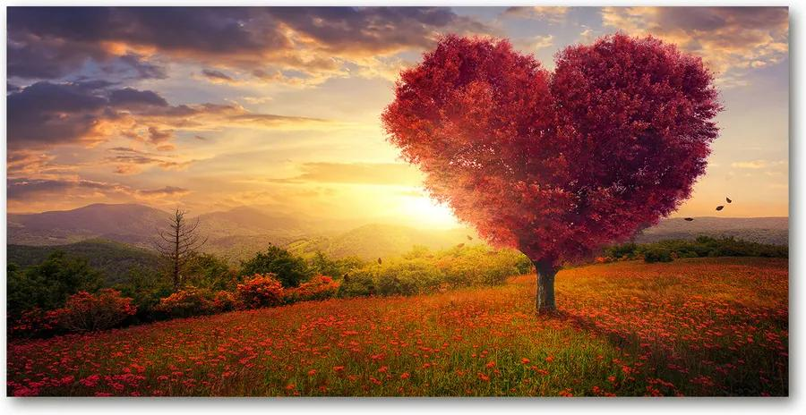 Imagine de sticlă Copac caseta de inimă