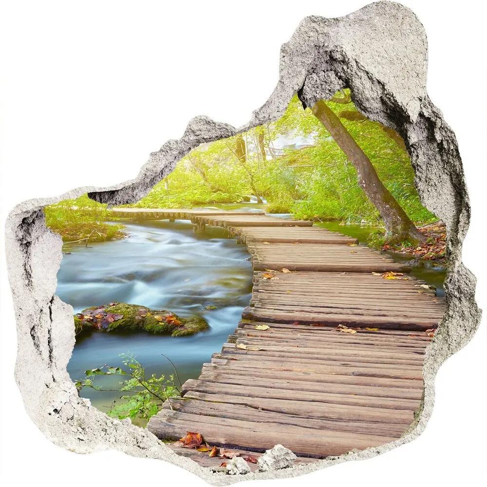 Fototapet 3D gaură în perete Calea în pădure