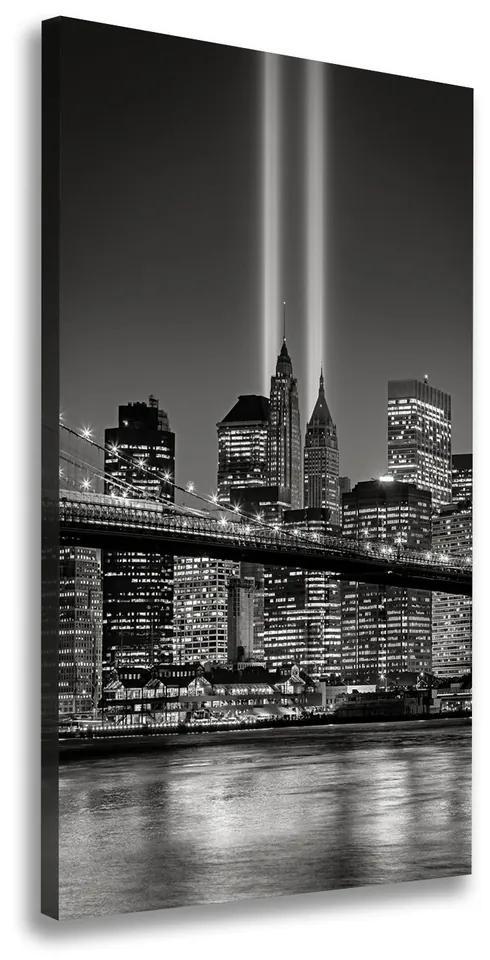Tablouri tipărite pe pânză Manhattan New York City
