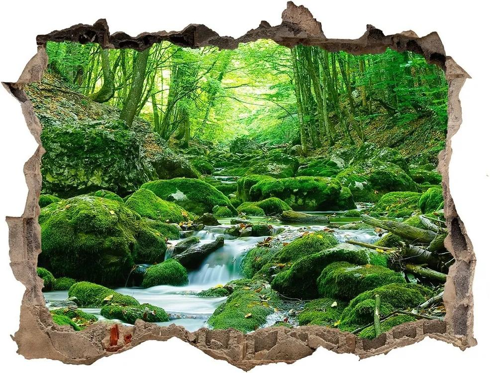 Autocolant autoadeziv gaură Stream în pădure