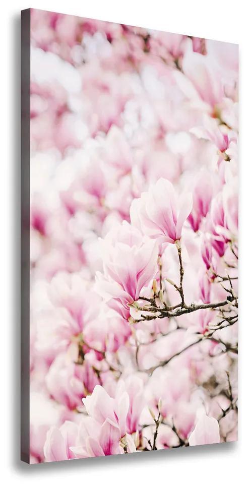 Tablouri tipărite pe pânză Flori magnolia
