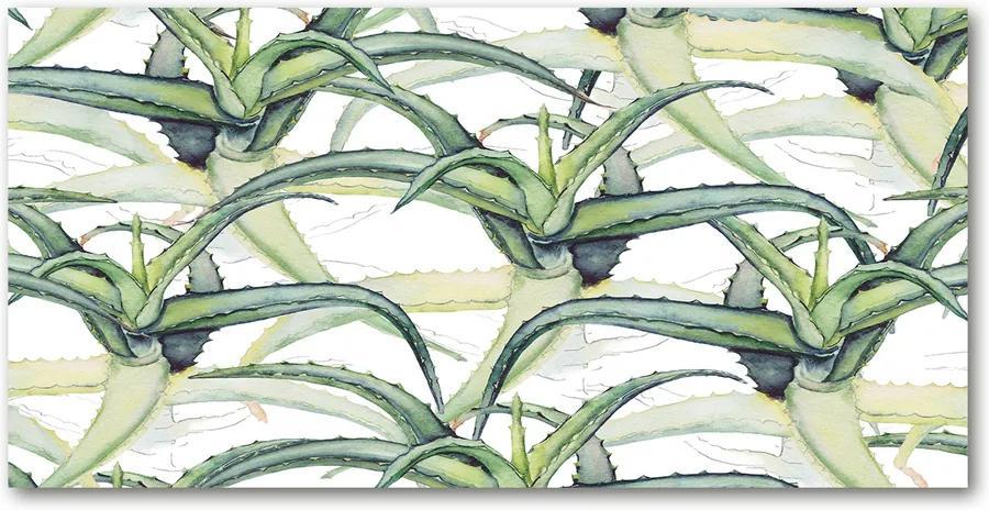 Tablou sticlă acrilică Aloe