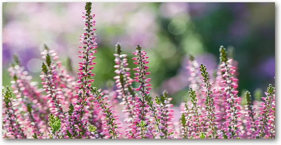 Imagine de sticlă Flori heather