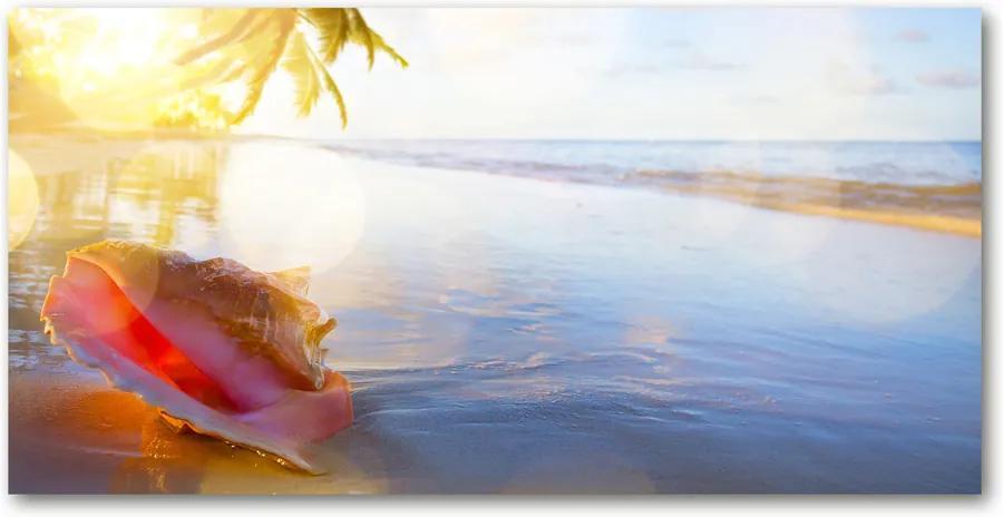 Tablou pe sticlă acrilică Seashell pe plaja