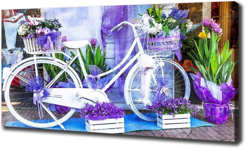Pictură pe pânză Bicicletă alb