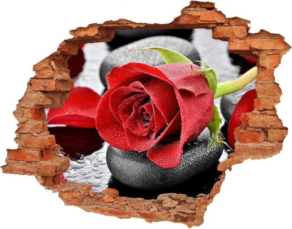 Autocolant un zid spart cu priveliște Trandafir roșu