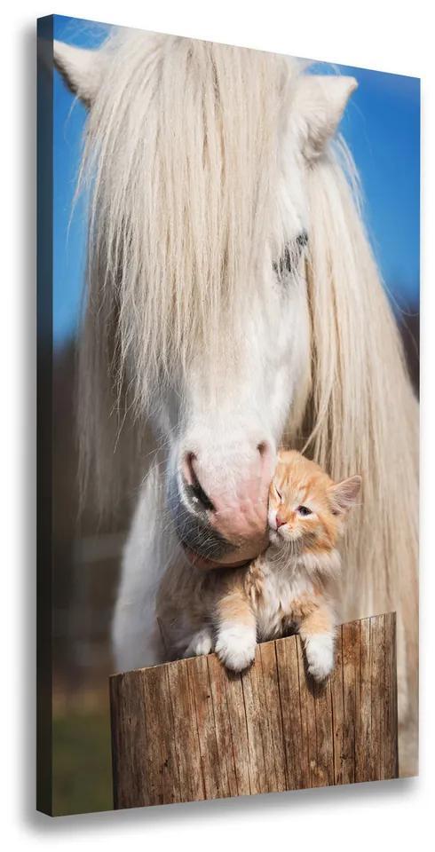 Tablou pe pânză Cal alb cu o pisică