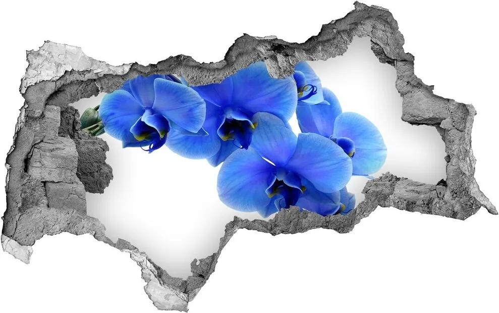 Autocolant gaură 3D Albastru orhidee