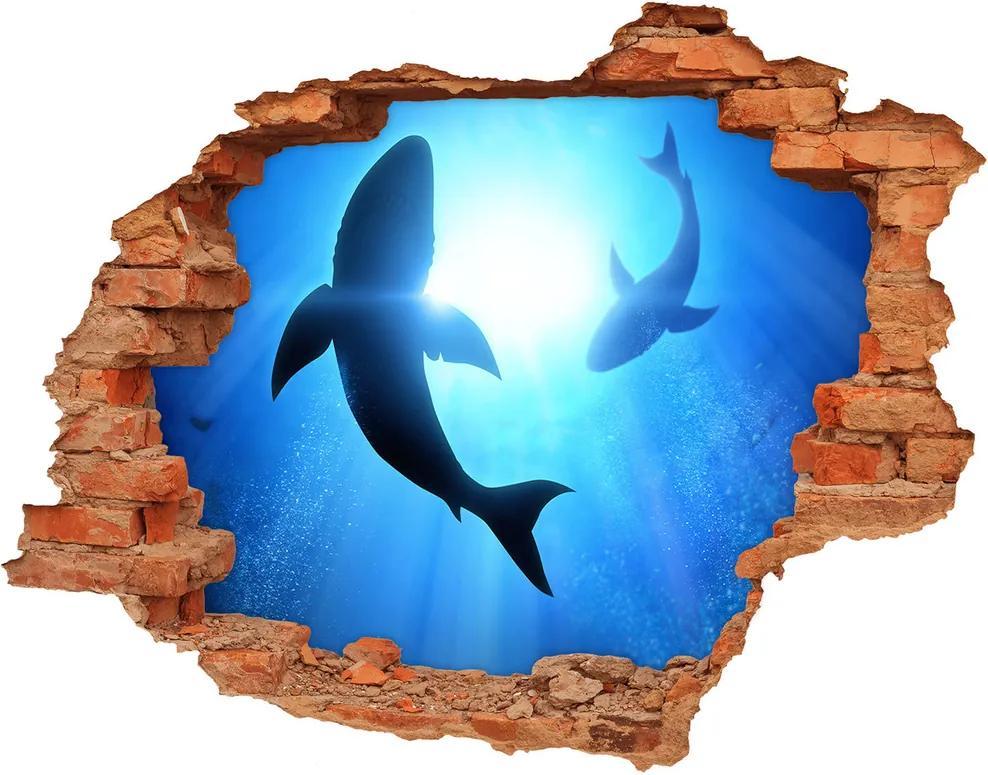 Autocolant de perete gaură 3D Doi rechini