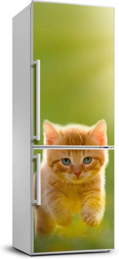 Autocolant frigider acasă Red cat