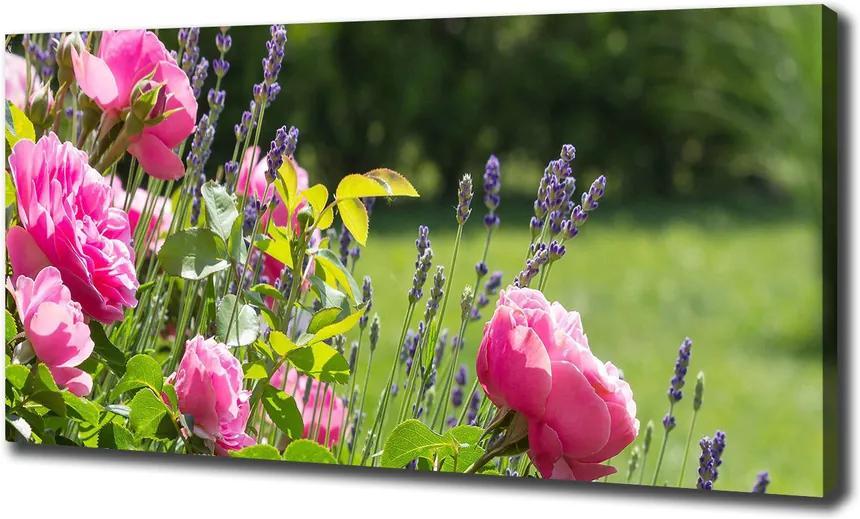 Pictură pe pânză Trandafir salbatic