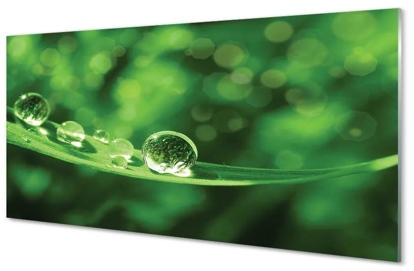 Tablouri acrilice Tablouri acrilice Picături de apă macro