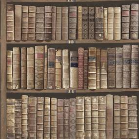 Tapet Vintage Carti Biblioteca Stejar Oxford II