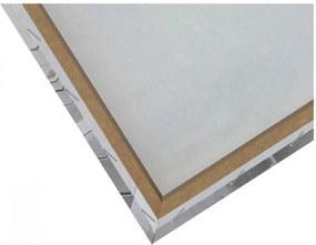 CARO Tablou pe pânză - Friend 30x40 cm