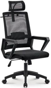 Scaun ergonomic, spătar mesh, suport umeraș, Negru, SIB219