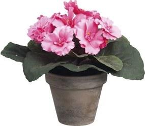 Floare artificiala, Saintpaulia, roz