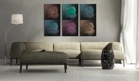 Tablou Bimago - Six shades of rose 60x40 cm