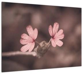 Tablou cu floare roz (70x50 cm), în 40 de alte dimensiuni noi