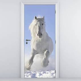 Fototapeta pentru ușă - cal alb (95x205cm)