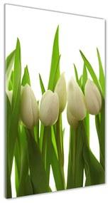 Fotografie imprimată pe sticlă Lalele albe
