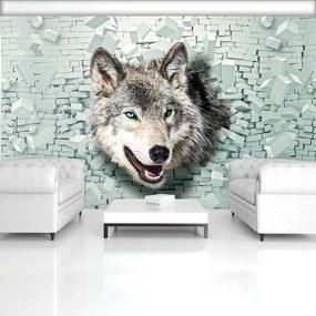 Fototapet - Lup iese din 3D perete (254x184 cm), în 8 de alte dimensiuni noi