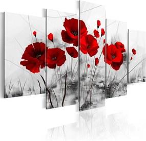 Tablou Bimago - Poppies - red miracle 200x100 cm