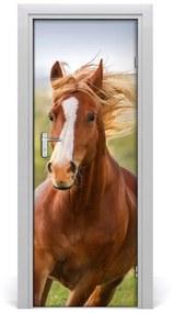 Autocolante pentru usi Un cal în galop