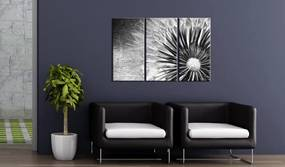 Tablou - pampeliška (černobílý) 60x40 cm
