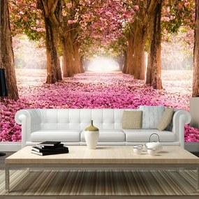 Fototapet Bimago - Pink grove + Adeziv gratuit 250x175 cm