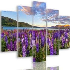 CARO Tablou pe pânză - Lavender Field 150x100 cm