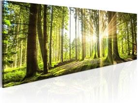 Tablou pe pânză Bimago Daylight 135 x 45 cm
