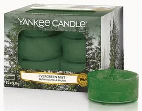 Yankee Candle lumanari parfumate de ceai Evergreen Mist