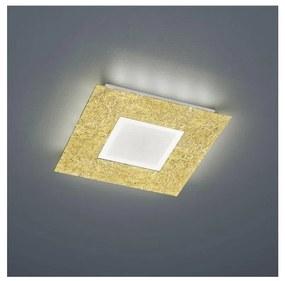 Trio - Plafonieră LED CHIROS LED/12W/230V + LED/3,5W