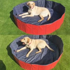 PawHut Piscina din Plastic Margine Stabilă pentru câini Animale Domestice, Albastră, 160x30cm (ØxH)